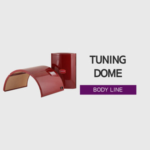 Tuning Dome (튜닝돔)